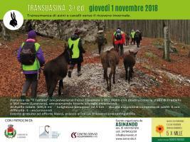 Transuasina 3a ed. - giovedì 1° Novembre '18, da Passo Tanamea a Pradielis (Lusevera)