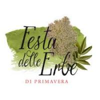 Mostra delle erbe di Primavera a Forni di Sopra. 8, 9, 15 e 16 giugno